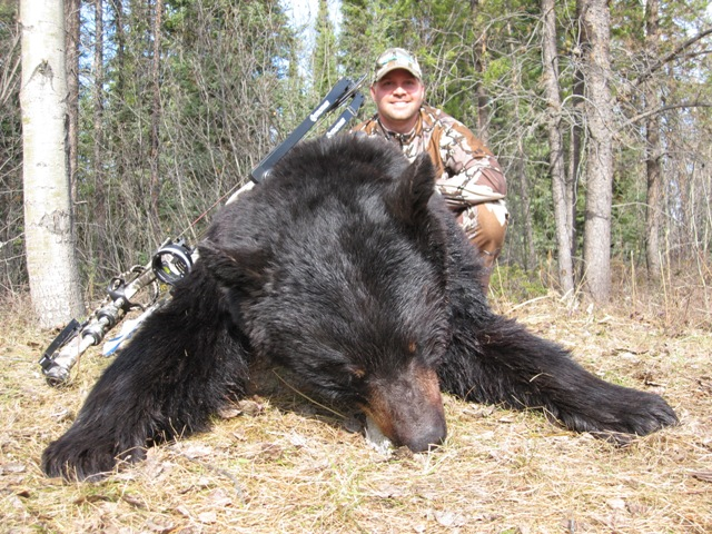 Black Bear Hunting Outfitters