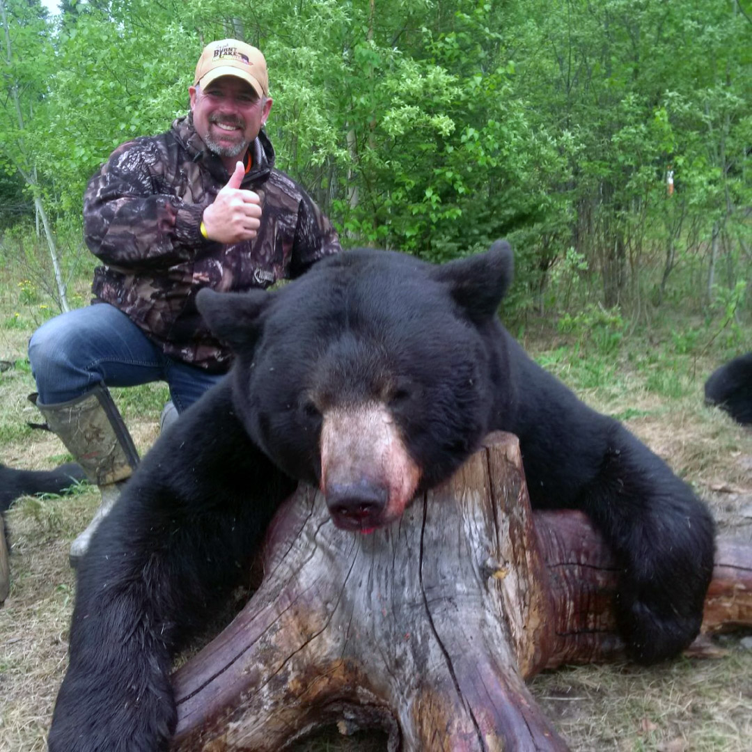 Black Bear Hunts Burnt Lake Outfitters