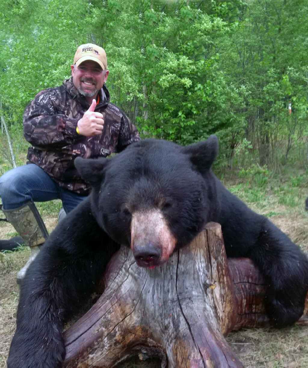 Black Bear Hunts Burnt Lake Outfitters