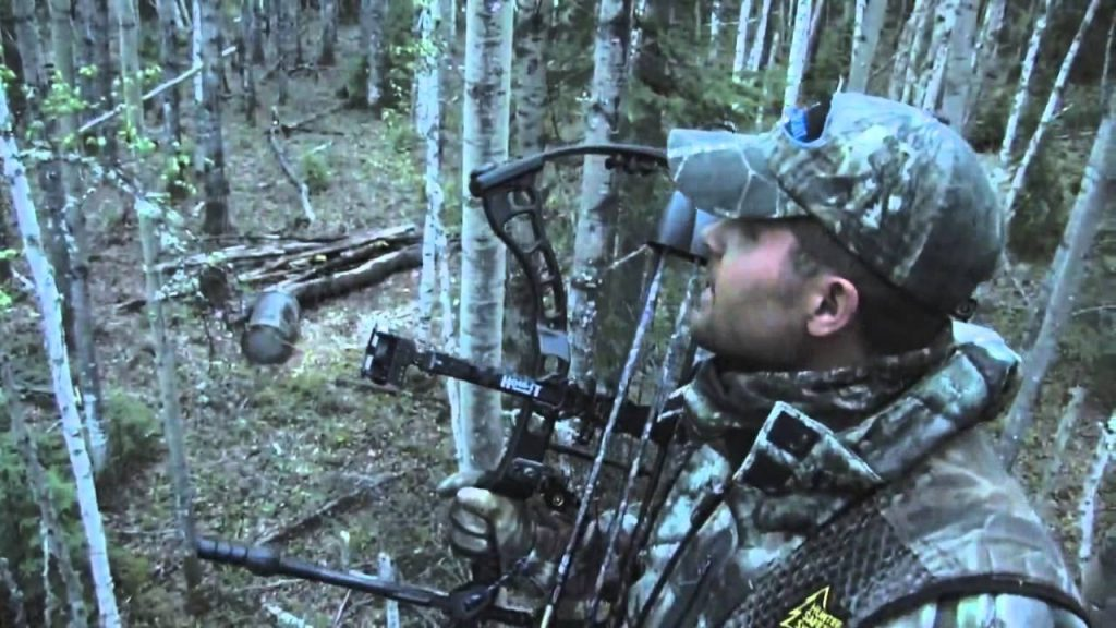 DreamPoint Outdoors Alberta Bear Hunt